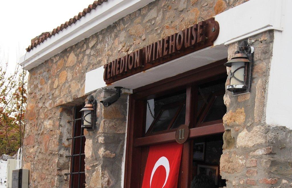 tenedion winehouse